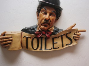 TOILETS--it's not a bad word or a shameful thing to need.