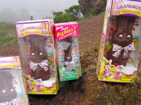 These bunnies have sworn eternal allegiance to Princess Melita Bonaparte in her efforts to annex Monaco!