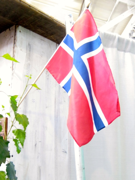 The flag of Norway.